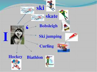 I ' ski Ту skate Ту Ту Bobsleigh Ski jumping Curling Biathlon Hockey