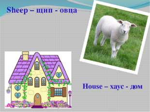Sheep – щип - овца House – хаус - дом