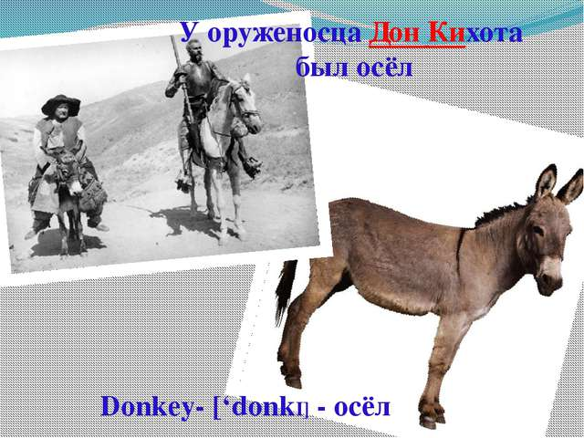 У оруженосца Дон Кихота был осёл Donkey- ['donkI] - осёл