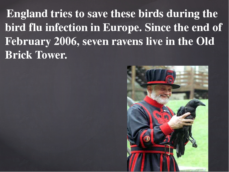 England tries to save these birds during the bird flu infection in Europe. S...