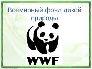 Всемирный фонд дикой природы