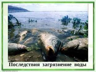 Последствия загрязнение воды