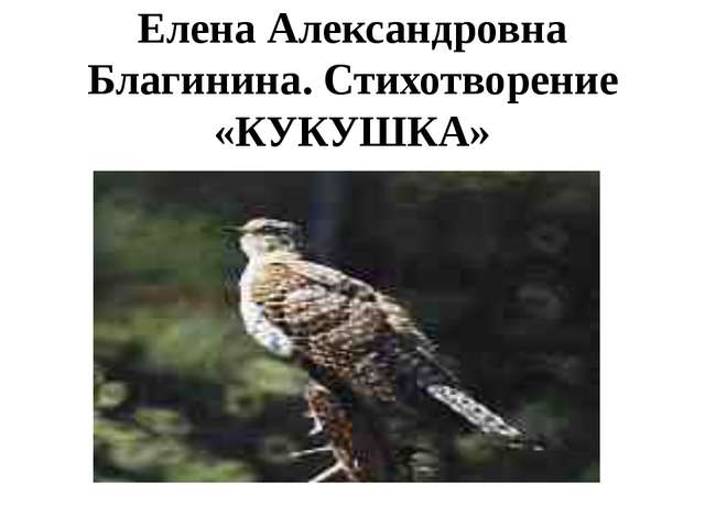 Елена Александровна Благинина. Стихотворение «КУКУШКА»