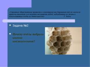«Странные общественные привычки и геометрические дарования пчёл не могли не п