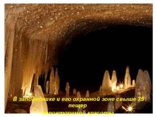 В заповеднике и его охранной зоне свыше 75 пещер неповторимой красоты.
