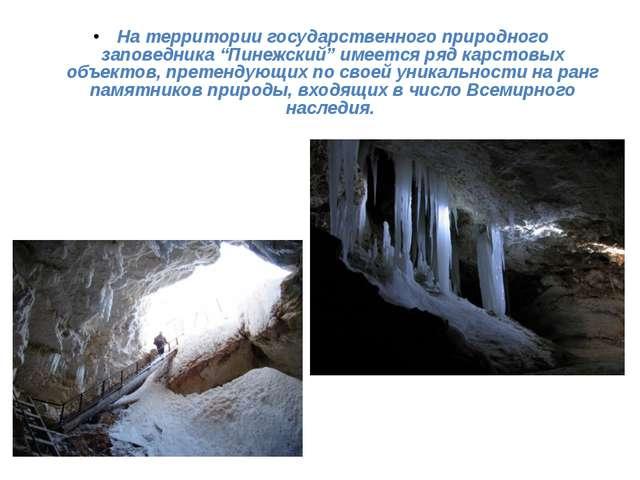 """На территории государственного природного заповедника """"Пинежский"""" имеется ряд..."""