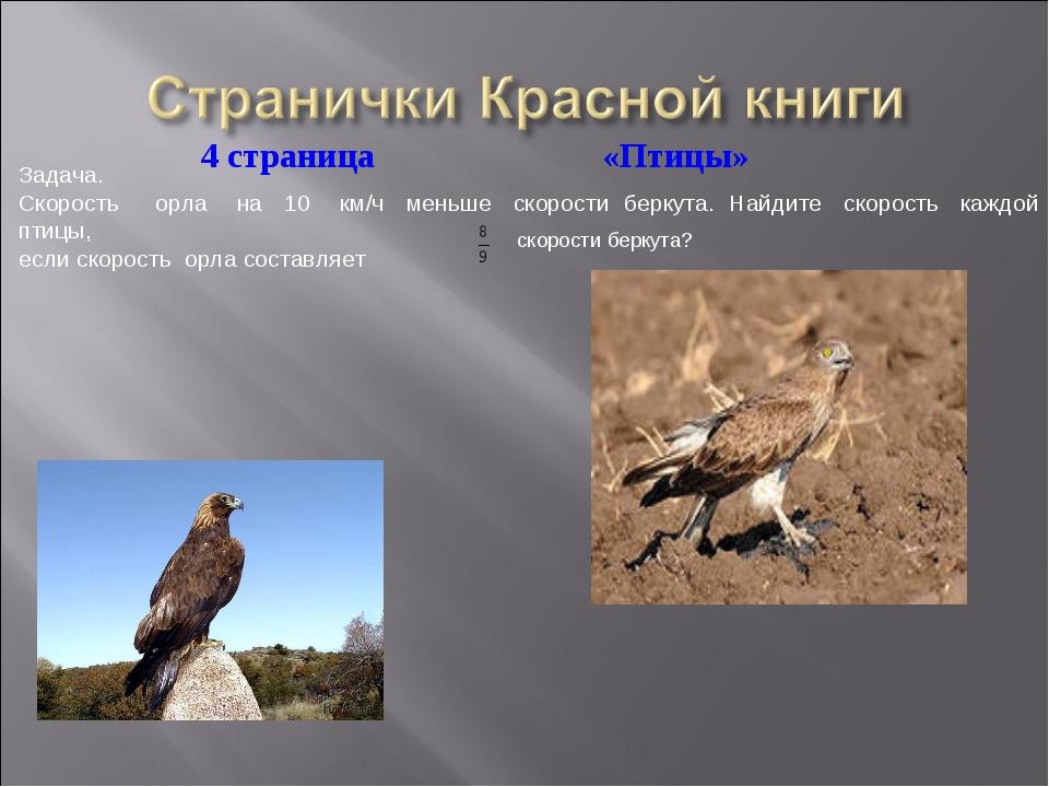 Задача. Скорость орла на 10 км/ч меньше скорости беркута. Найдите скорость ка...