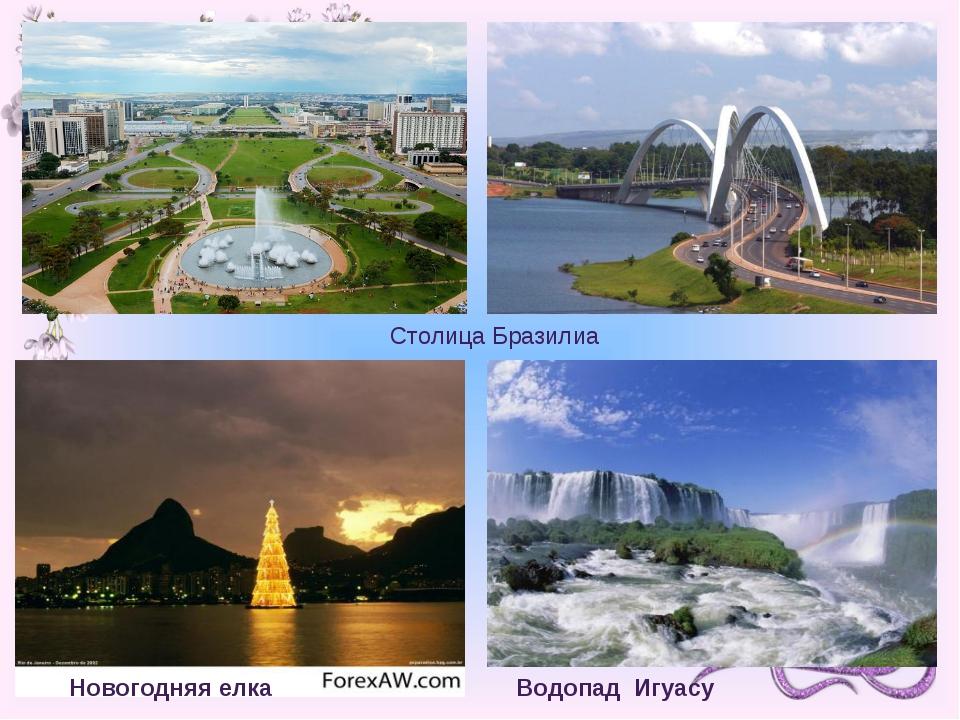 Водопад Игуасу Новогодняя елка Столица Бразилиа 7 чтец: Страна интересна не т...