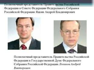 Полномочный представитель Правительства Российской Федерации в Совете Федерац
