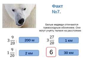 Белые медведи отличаются превосходным обонянием. Они могут учуять тюленя на