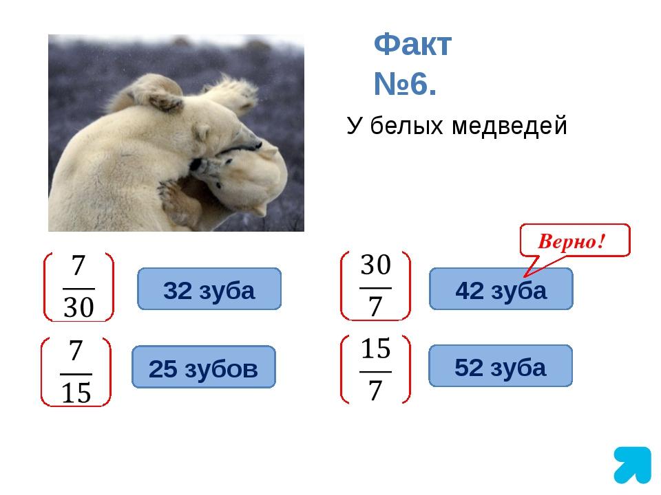 У белых медведей Факт №6. 32 зуба 42 зуба 52 зуба 25 зубов Верно!