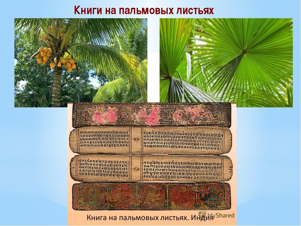 Книги на пальмовых листьях
