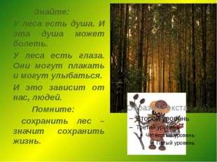 Знайте: У леса есть душа. И эта душа может болеть. У леса есть глаза. Они мо