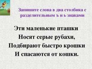 Запишите слова в два столбика с разделительным ъ и ь знаками Эти маленькие пт