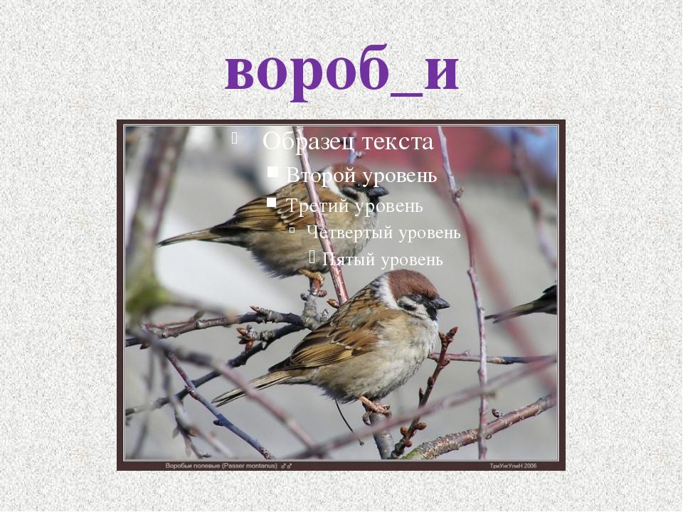 вороб_и