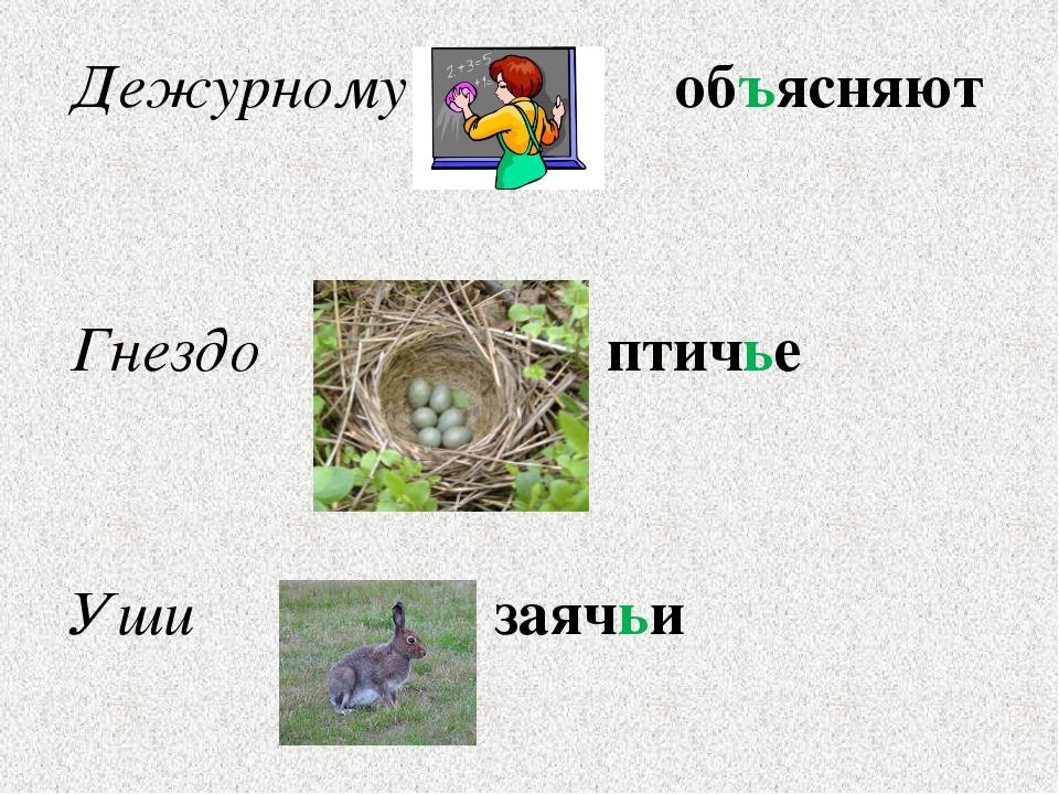 Дежурному объясняют Гнездо птичье Уши заячьи