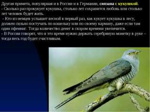Другая примета, популярная и в России и в Германии, связана с кукушкой. - Ско