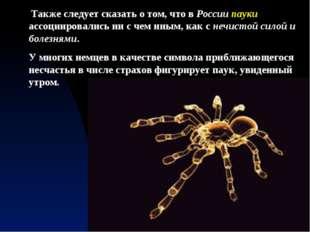 Также следует сказать о том, что в России пауки ассоциировались ни с чем ины