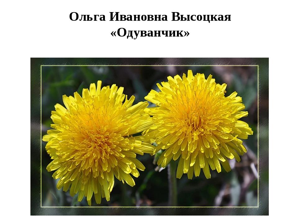 Ольга Ивановна Высоцкая «Одуванчик»