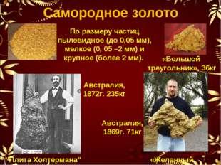 Самородное золото По размеру частиц пылевидное (до 0,05 мм), мелкое (0, 05 –2