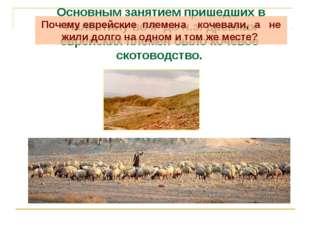 Основным занятием пришедших в Палестину во II до н.э. древних еврейских племе