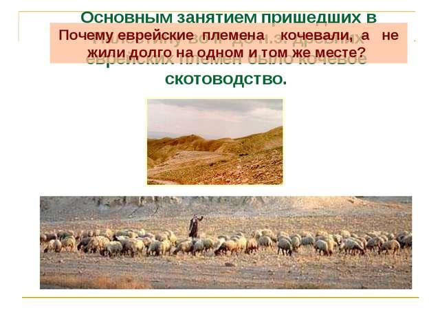 Основным занятием пришедших в Палестину во II до н.э. древних еврейских племе...
