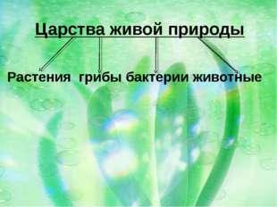 Царства живой природы  Растения грибы бактерии животные