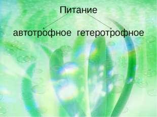 Питание автотрофное гетеротрофное
