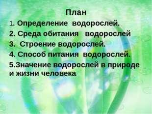 План 1. Определение водорослей. 2. Среда обитания водорослей 3. Строение водо