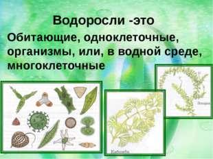 Водоросли -это Обитающие, одноклеточные, организмы, или, в водной среде, мног