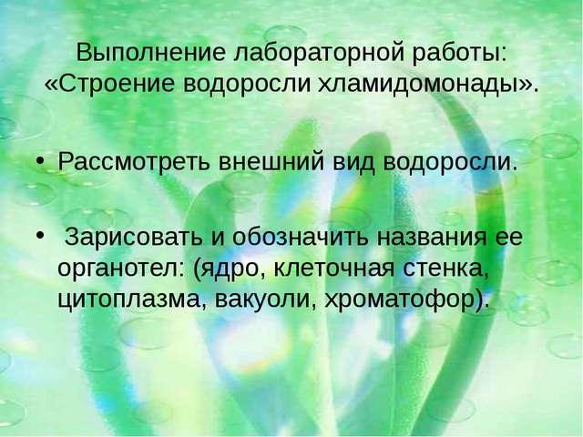 Выполнение лабораторной работы: «Строение водоросли хламидомонады». Рассмотр...