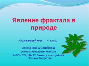 Явление фрактала в природе Окружающий мир 4 класс Зенина Ирина Семеновна учит