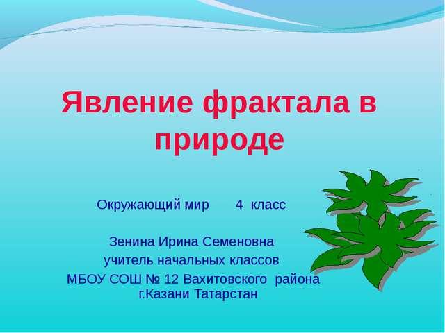 Явление фрактала в природе Окружающий мир 4 класс Зенина Ирина Семеновна учит...