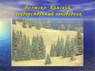 Волжско- Камский государственный заповедник