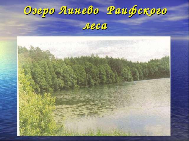 Озеро Линево Раифского леса