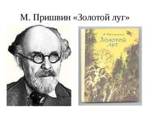 М. Пришвин «Золотой луг»