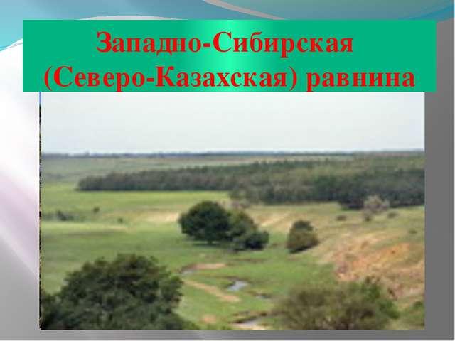 Западно-Сибирская (Северо-Казахская) равнина