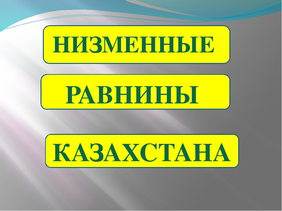 НИЗМЕННЫЕ КАЗАХСТАНА РАВНИНЫ