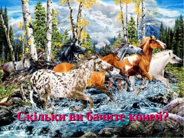 Скільки ви бачите коней?