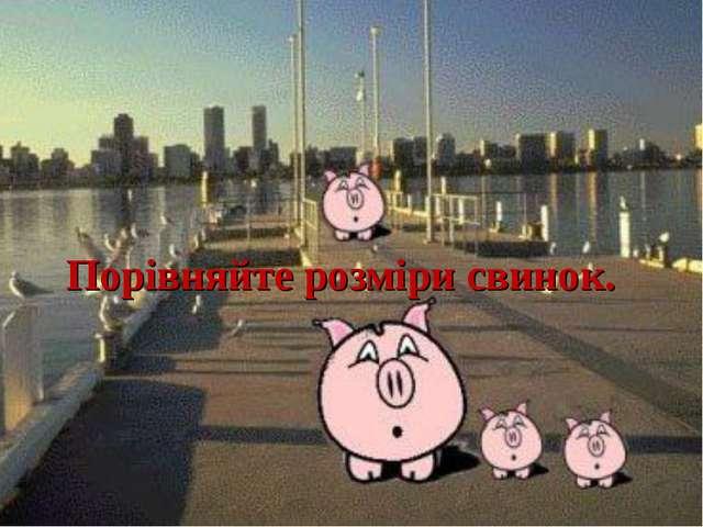 Порівняйте розміри свинок.