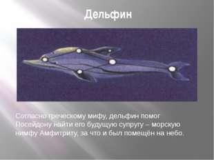 Дельфин Согласно греческому мифу, дельфин помог Посейдону найти его будущую с