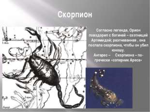 Скорпион Согласно легенде, Орион повздорил с богиней – охотницей Артемидой; р