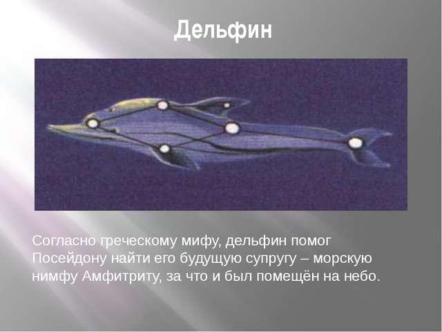 Дельфин Согласно греческому мифу, дельфин помог Посейдону найти его будущую с...