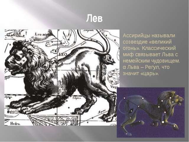Лев Ассирийцы называли созвездие «великий огонь». Классический миф связывает...
