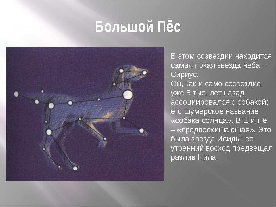 Большой Пёс В этом созвездии находится самая яркая звезда неба – Сириус. Он,...