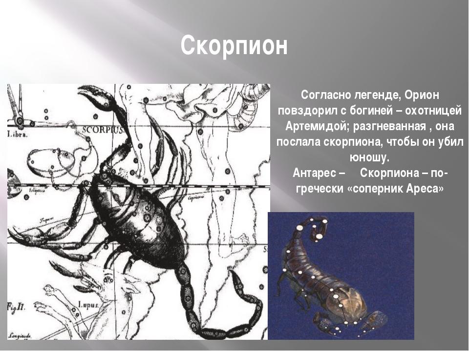 Скорпион Согласно легенде, Орион повздорил с богиней – охотницей Артемидой; р...