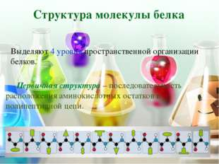 Структура молекулы белка В организме человека обнаружено порядка 10 тыс. раз