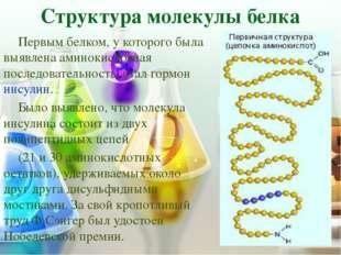 ПЕРВИЧНАЯ Структура Первичная структура белковой молекулы определяет свойства