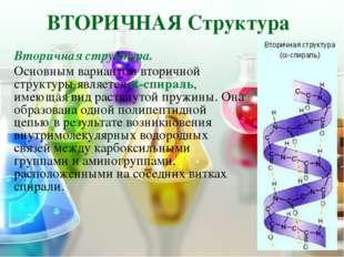 ТРЕТИЧНАЯ Структура Третичная структура – глобула, возникающая в результате в