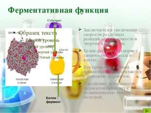 Запасающая функция К таким белкам относятся так называемые резервные белки, к